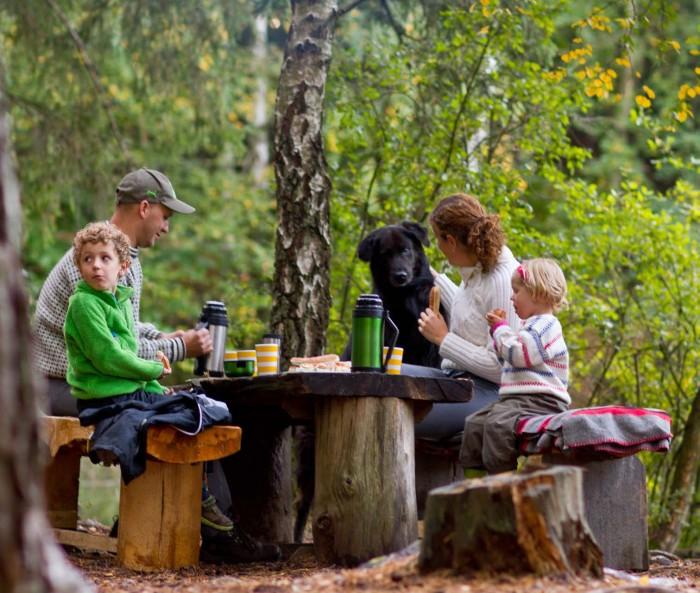 familj på skogsutflykt