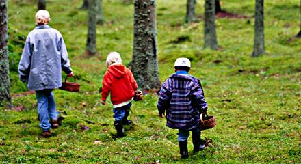 Familj på skogspromenad - plockar svamp - www.växthuseffekten.se