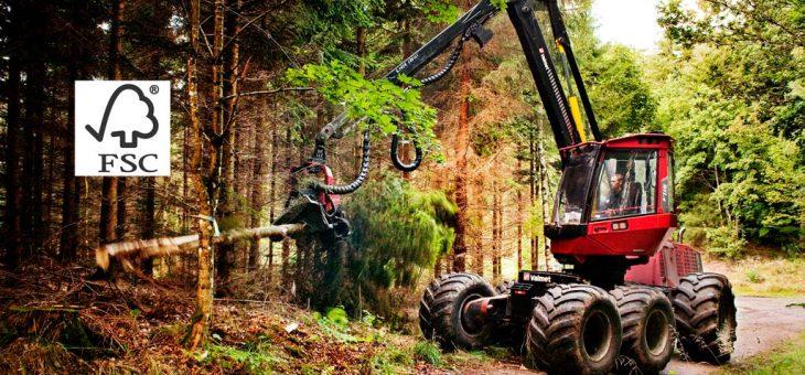 FSC – miljömärkning för skogen